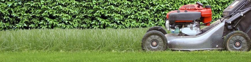 Lawn & Yard Work
